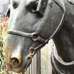 Pferde sind das Symbol dieses Flohmarktes