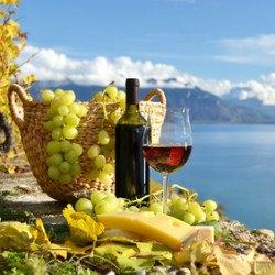 Wein und Landschaft der Toskana