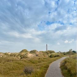 Die Dünenlandschaft Norderneys mit Leuchtturm im Hintergrund