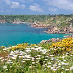 Überblick üüber die Blumenreiche Küste Guerseys
